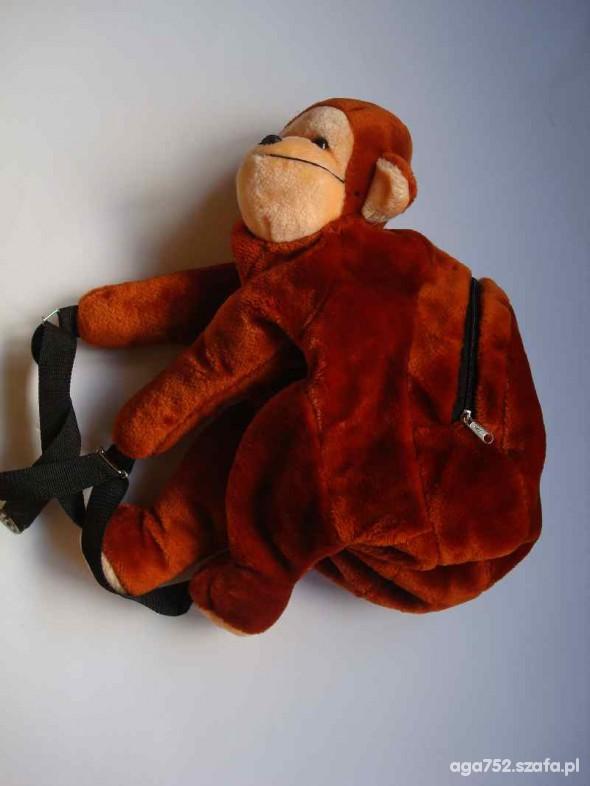 Milusiński plecaczek małpka