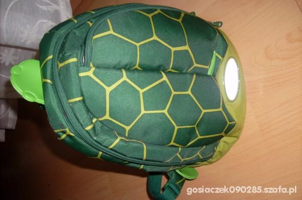 Plecaczek żółówik