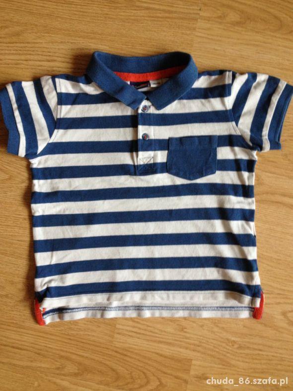 Koszulka Polo 110 do 116 Lupilu