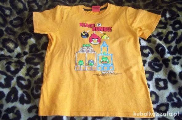 Bawełniana super koszulka z Angry Birds chłop 146
