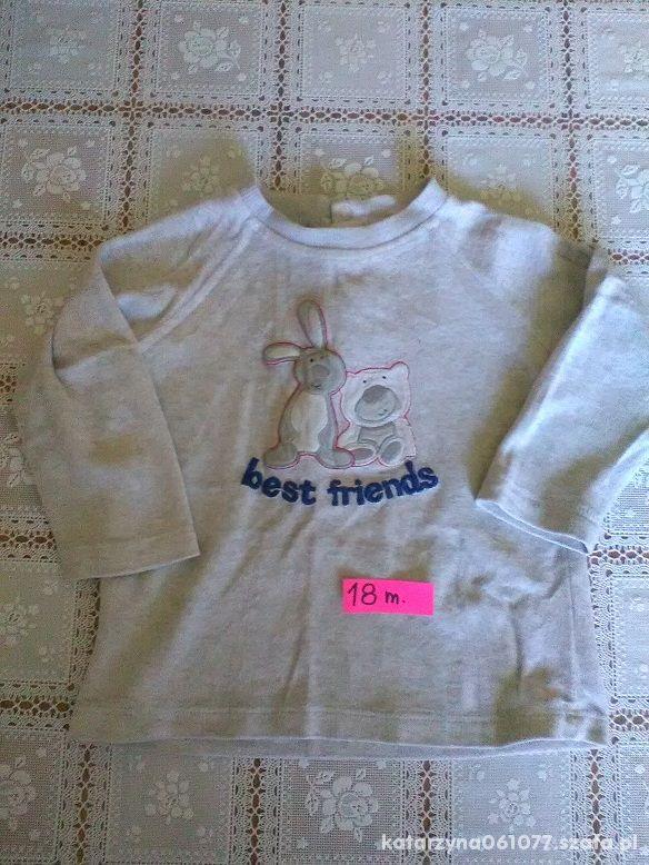 fajna bluza 86 18m z królikiem i misiem