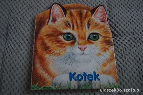 książka Kotek