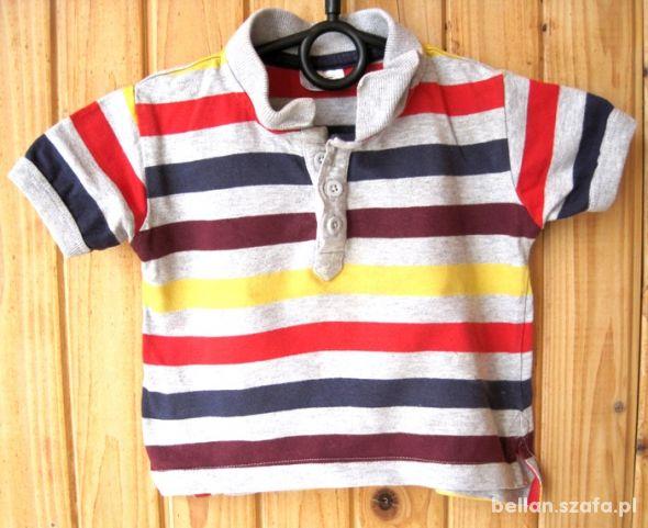 koszulka polo chłopiec paski 6 9 miesięcy 74 cm