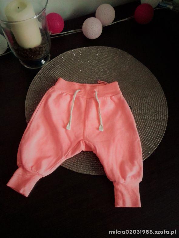 neonowe spodnie dresowe