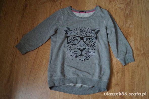 bluza z tygrysem M