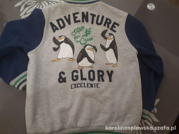 Bluza bejsbolówka pingwiny 128