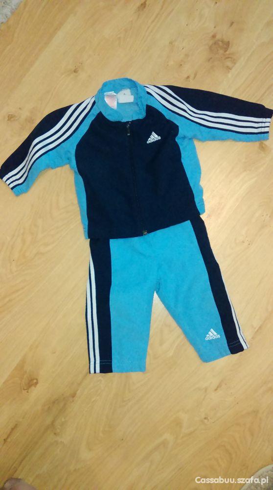 Adidas bluza spodnie 9 12 m 74cm