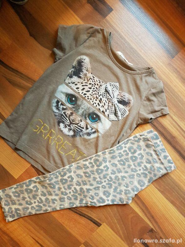 H&M Bluzka NEXT legginsy Tygrys panterka 122 128