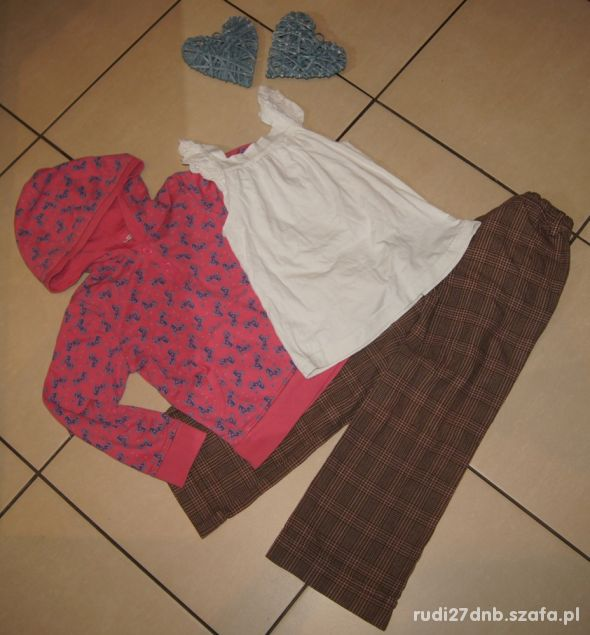 Zestaw dziewczynka spodnie bluza konie koniki 122