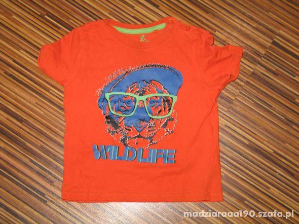 koszulka Lupilu rozmiar 86 92