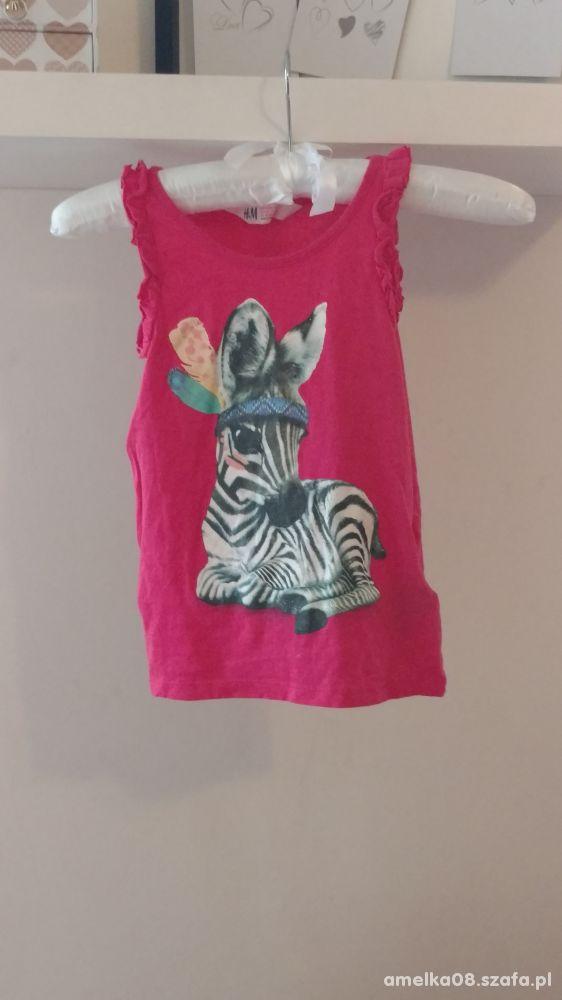 2 kolorowe bluzeczki dla dziewczynki H &M na 116