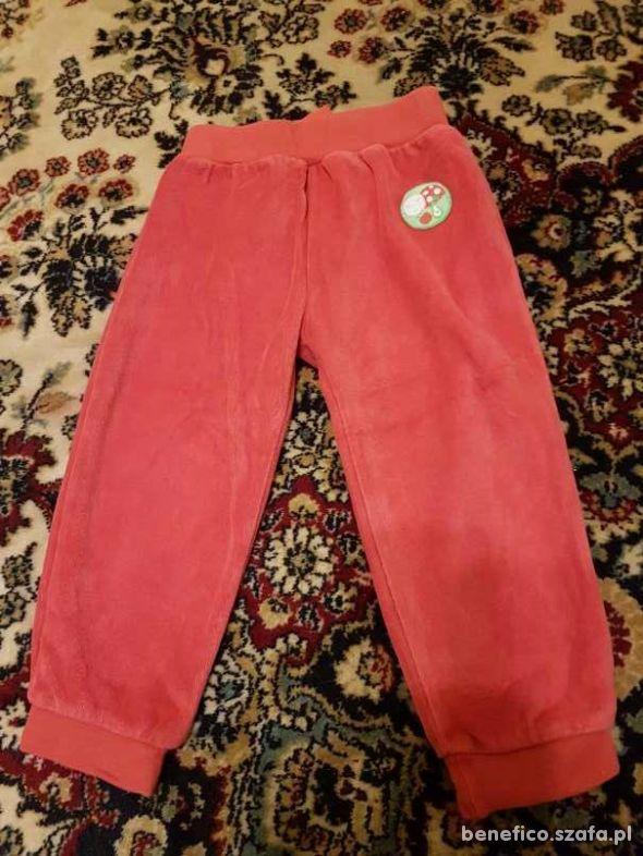używane welurkowe spodnie czerwone roz 86