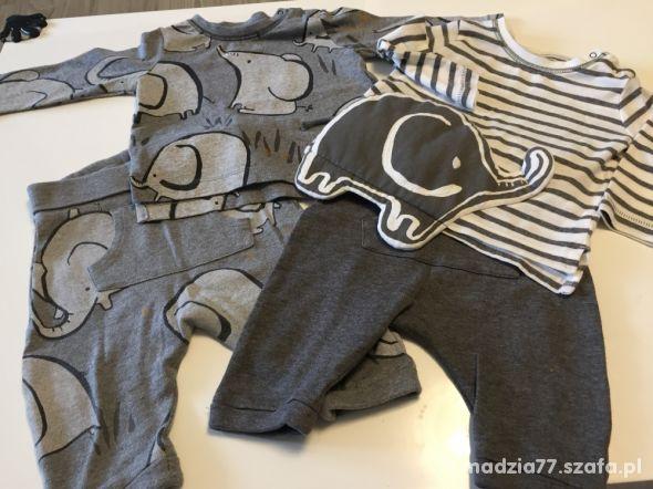 Komplet next koszulki spodnie ze słonikiem 62 68