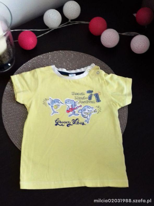bluzeczka dla chlopczyka