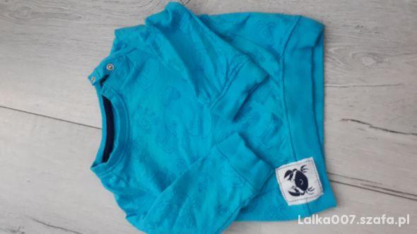 Błękitna bluza